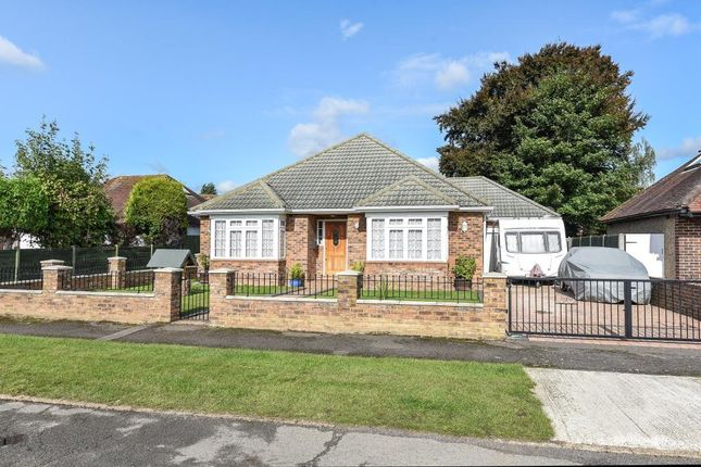 Thumbnail Detached bungalow for sale in Westfield, Old Woking