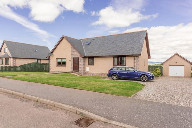 Thumbnail Detached house for sale in Craigo, Montrose