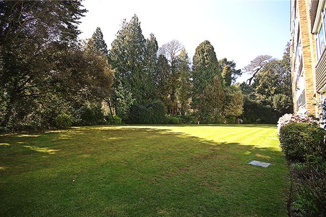Picture No. 06 of Branksome Park, Poole, Dorset BH13