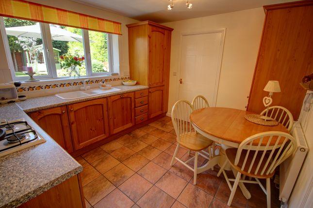 Breakfast Kitchen Photo 2