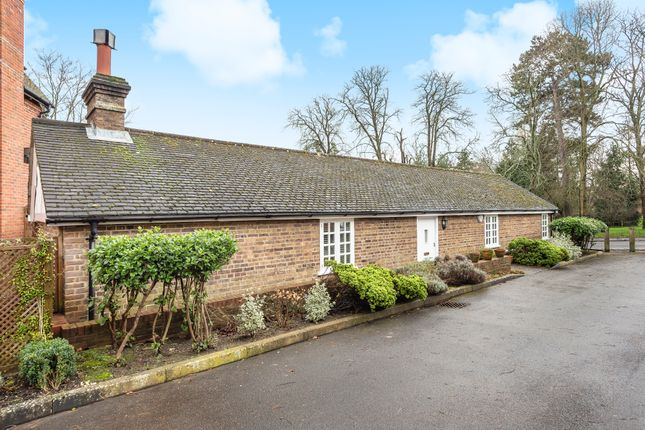 Thumbnail Detached bungalow for sale in Bluecoat Pond, Christs Hospital, Horsham