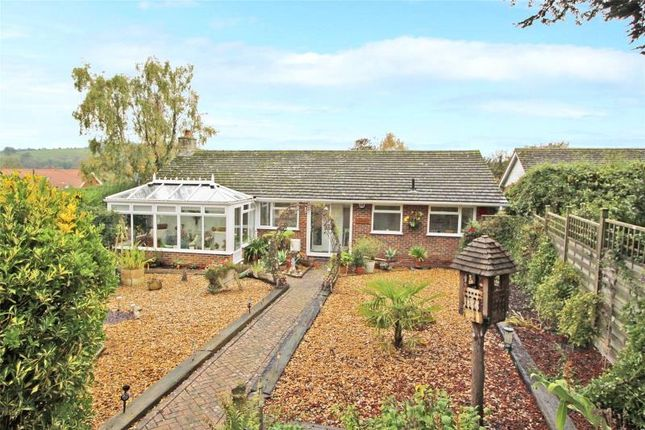 Thumbnail Detached bungalow for sale in Kilmore Close, Findon Village, Worthing