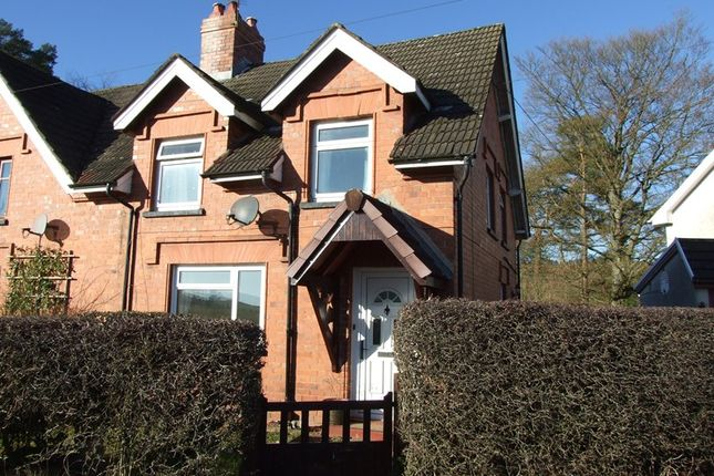 Thumbnail Semi-detached house to rent in Beulah, Llanwrtyd Wells