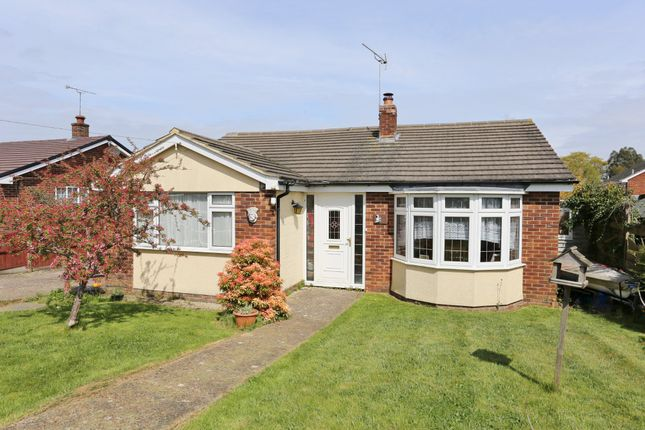 Thumbnail Detached bungalow to rent in Provene Gardens, Waltham Chase, Southampton