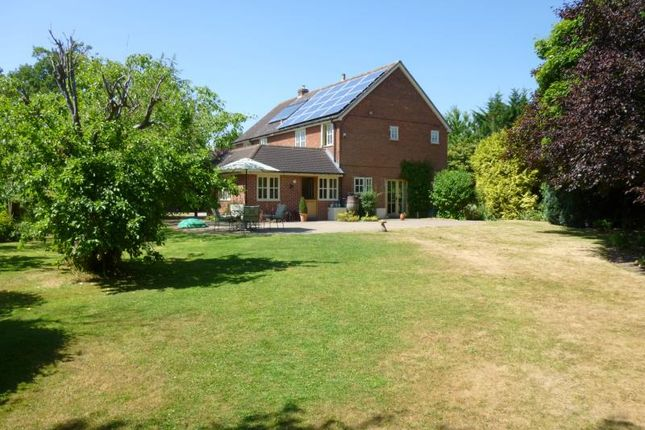 Thumbnail Detached house to rent in Goddards Lane, Sherfield On Loddon, Hampshire