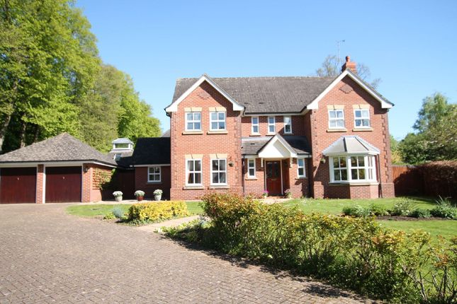 Thumbnail Detached house for sale in Balmoral Close, South Knighton, Leicester