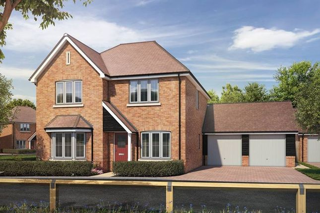 """Thumbnail Detached house for sale in """"The Nenhurst"""" at St. Legers Way, Riseley, Reading"""