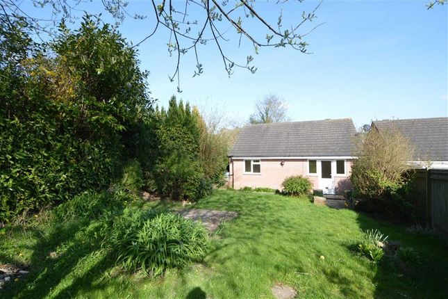 Thumbnail Detached bungalow to rent in Queens Road, Crowborough