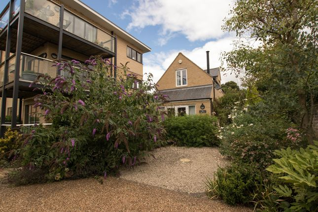 Thumbnail Detached house to rent in Long Road, Cambridge