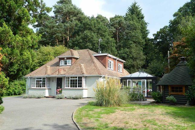 Thumbnail Property to rent in Woodside, Oaklands Lane, West Lavington, Midhurst