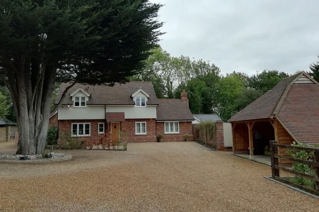 Thumbnail Detached house to rent in Main Road, Margaretting, Essex