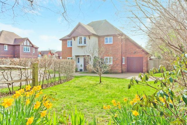 Thumbnail Detached house for sale in Wintons Close, Burgess Hill