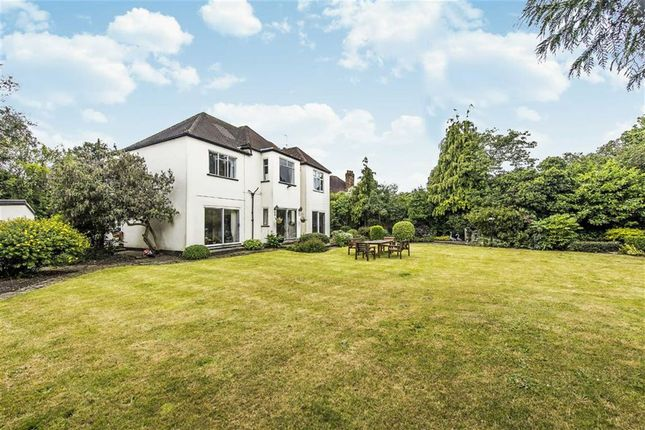 Thumbnail Detached house for sale in Waldegrave Road, Twickenham