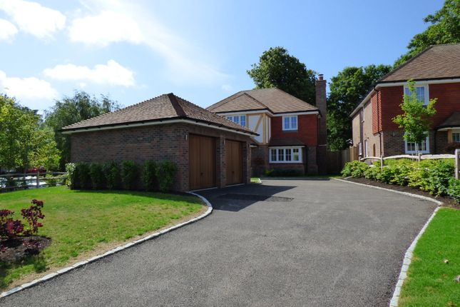 Thumbnail Detached house for sale in West Drive, Angmering, Littlehampton