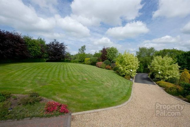 Property For Sale Ballynorthland Park Dungannon