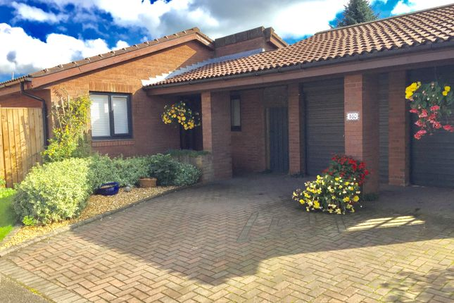 Thumbnail Detached bungalow for sale in Spring Meadow, Leyland