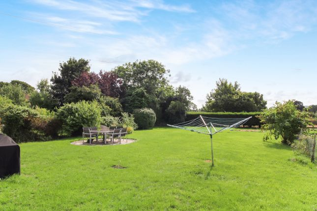 Thumbnail Cottage to rent in Selborne Road, West Worldham, Alton