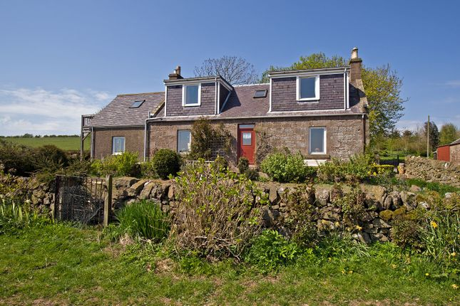 Thumbnail Detached house for sale in St. Cyrus, Montrose
