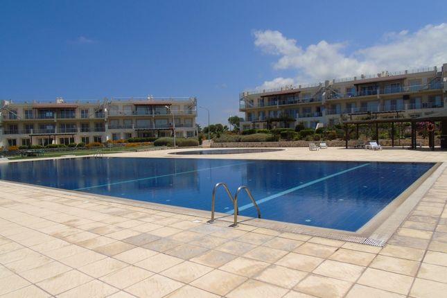 Seaterra Marina, Tatlisu, Cyprus