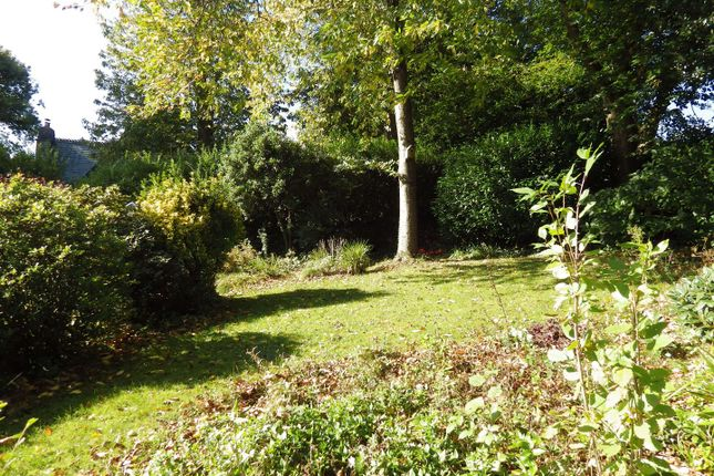 Rear Garden of Shute Wood, Hollocombe, Chulmleigh EX18