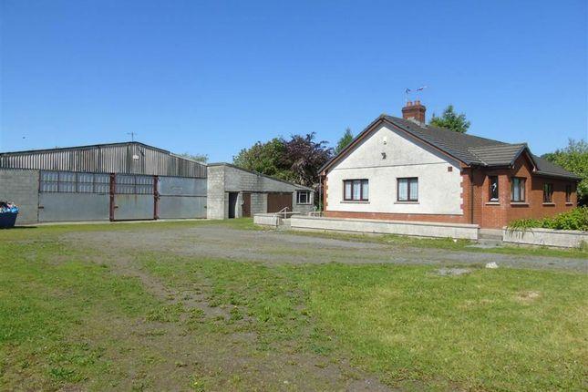 Thumbnail Property for sale in Melcourt, Heol Y Meinciau, Llanelli