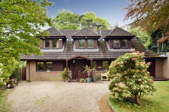 Thumbnail Detached house for sale in Dome Hill Park, London
