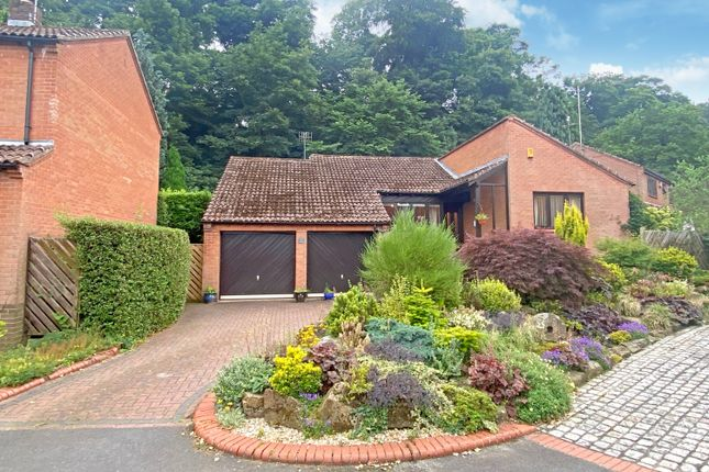 Thumbnail Detached bungalow for sale in Akley Bank Close, Totley