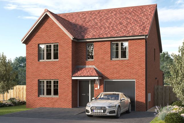 """Thumbnail Detached house for sale in """"The Tambrook """" at Stirling Road, Larbert"""