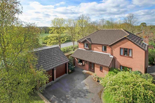 Thumbnail Detached house for sale in Great Mead, Denmead, Waterlooville