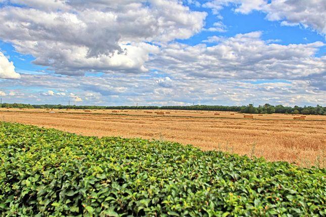 Views of Hempstalls Close, Hunsdon, Ware SG12