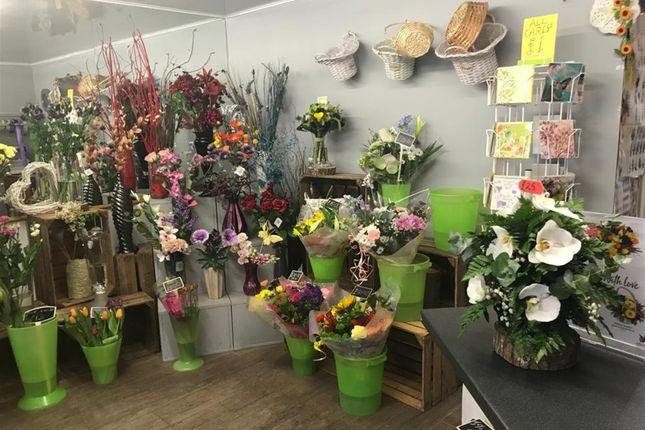 Thumbnail Retail premises for sale in Florist NE66, Northumberland