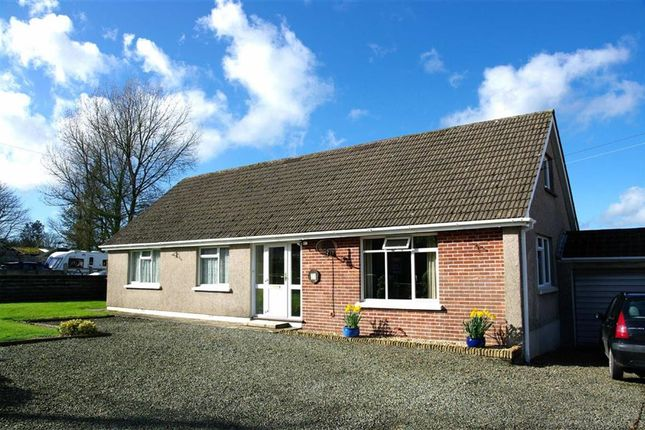 Thumbnail Detached bungalow for sale in Pill Road, Hook, Haverfordwest
