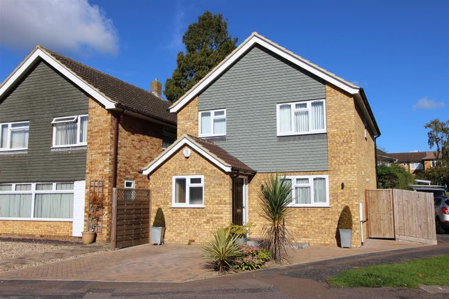 Thumbnail Detached house for sale in Branksome Close, High Street Green, Hemel Hempstead