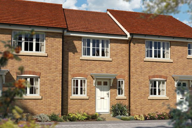 "Thumbnail Terraced house for sale in ""The Amberley"" at Priory Fields, Wookey Hole Road, Wells, Somerset, Wells"