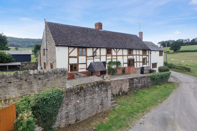 Thumbnail Detached house for sale in Twyford, Hereford