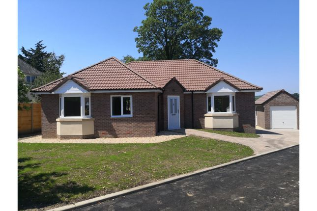 Thumbnail Detached bungalow for sale in Brookhill Gardens, Axminster