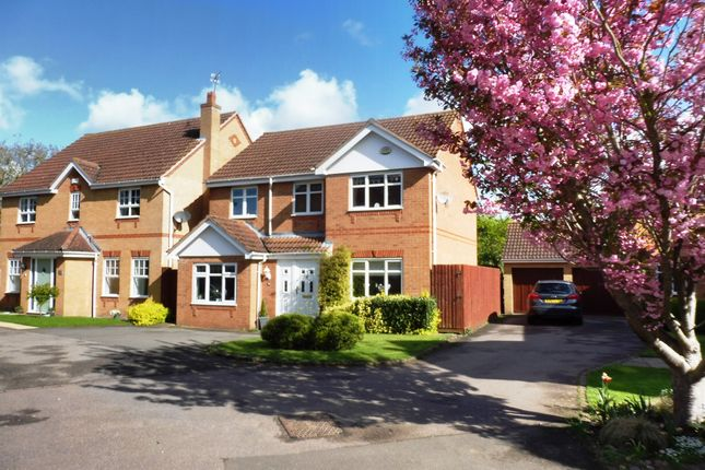 Thumbnail Detached house for sale in Orchard Way, Thrapston, Kettering