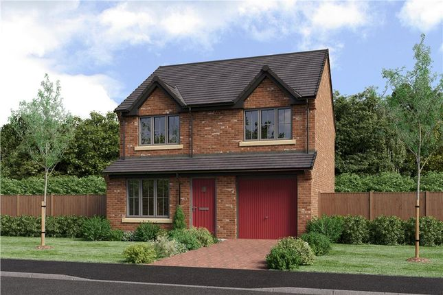"Thumbnail Detached house for sale in ""The Larkin Alt"" at School Aycliffe, Newton Aycliffe"