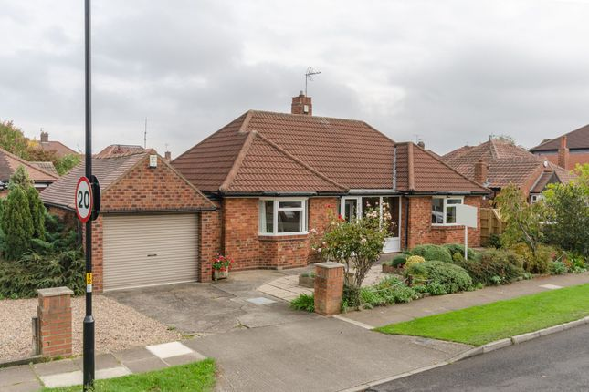 Thumbnail Detached bungalow for sale in Westlands Grove, York