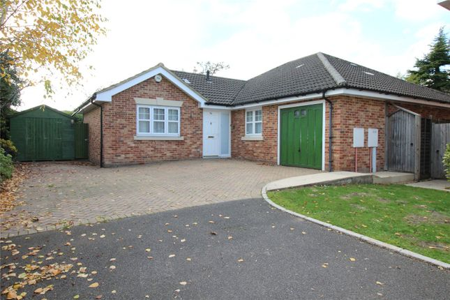 Thumbnail Detached house for sale in Bolle Road, Alton, Hampshire