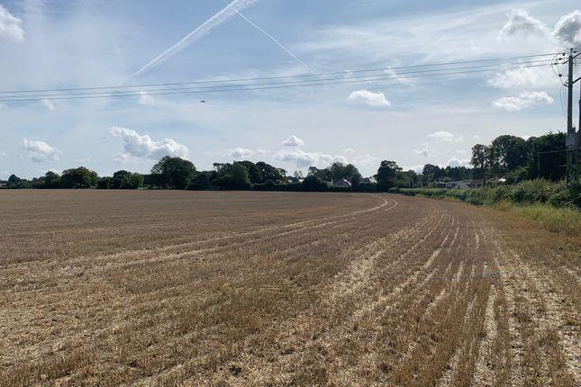 Wield Road, Alton, Hampshire GU34