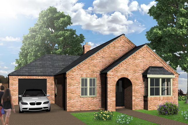 Thumbnail Detached bungalow for sale in Spire View, Boston Road, Heckington, Sleaford