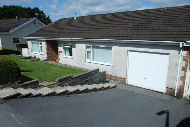 Thumbnail Bungalow to rent in Awel Tywi, Llangunnor, Carmarthen