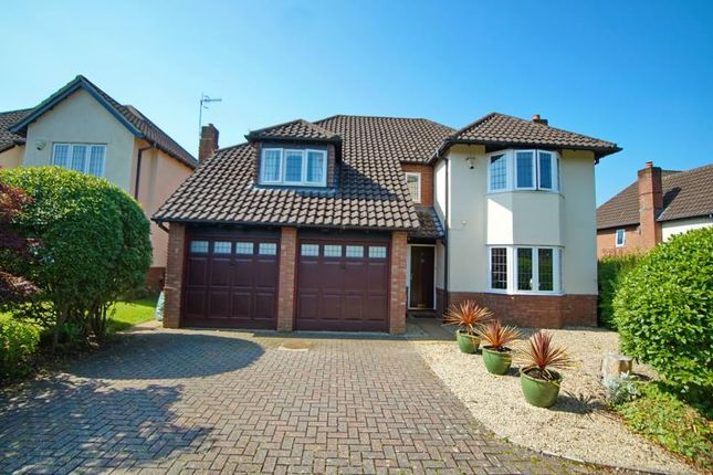 Thumbnail Detached house to rent in Parrys Grove, Stoke Bishop, Bristol