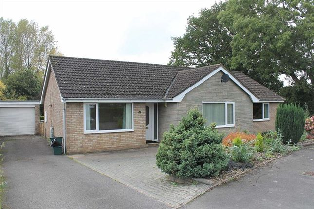 Thumbnail Detached bungalow for sale in Mushet Place, Coleford