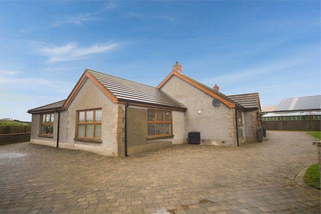 Thumbnail Detached bungalow for sale in Bush Road, Ballyhalbert, Newtownards, County Down