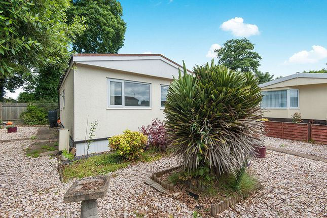 Thumbnail Bungalow for sale in First Avenue, Newport Park, Exeter