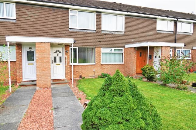 Thumbnail Terraced house to rent in Formby Walk, Eaglescliffe, Stockton-On-Tees