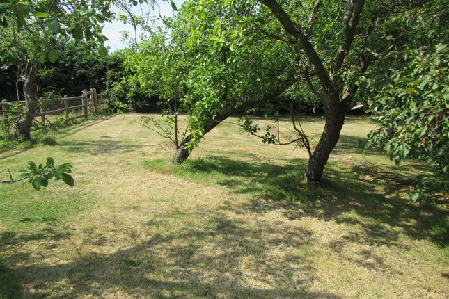 060717 015 of Herne Common, Herne Bay CT6