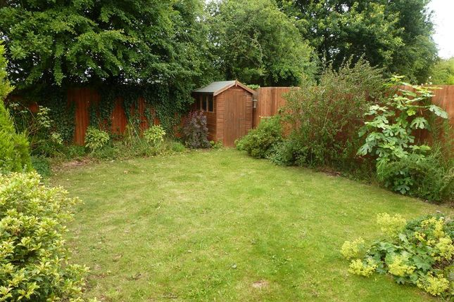 Garden of Meadow Nook, Boulton Moor, Derby DE24